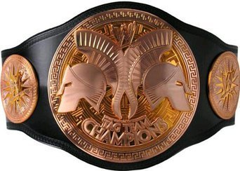 WWE Tag Team Championship Replica Title Belt (2014)